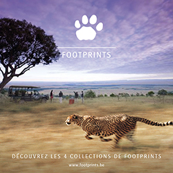footprintcarre_avril2015