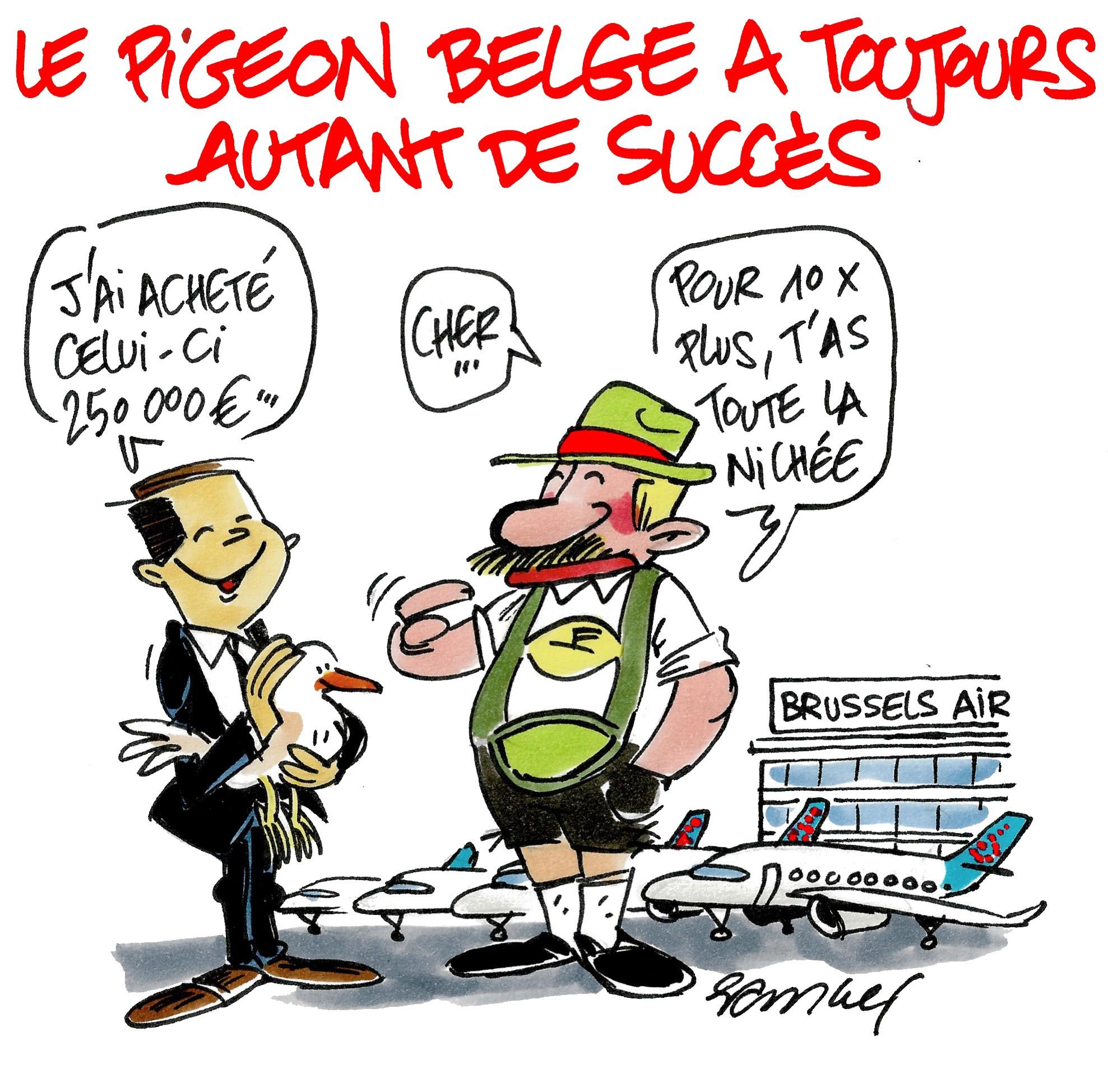 le-pigeon-belge