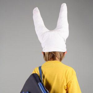 cropped-bonnet-d-ane