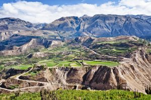 PEROU - Canyon de Colca