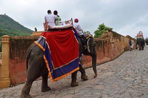 elephant_ride-4
