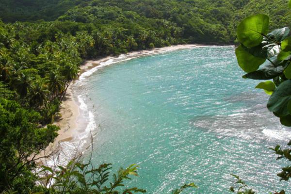 L'Île de la Dominique prête à accueillir de nouveaux tournages cinématographiques