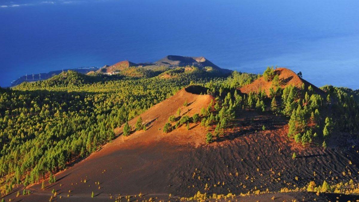 Explorez l'une des 19 réserves naturelles reconnues de La Palma...